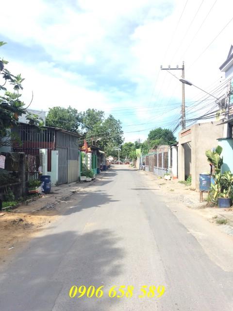 Bán đất mặt tiền đường nhựa Nguyễn Công Trứ gần chợ Đông Hòa